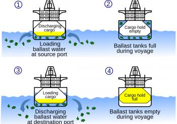 Denmark and China to co-op on ballast water